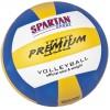 Tinklinio kamuolys Spartan Indoor, 5 dydis (vidaus)