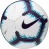 Futbolo Kamuolys Nike PL Pitch FA18 SC3597 100