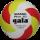 Tinklinio kamuolys Gala BP5163S